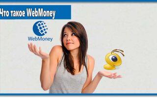 Что такое WebMoney: функционал, преимущества и недостатки
