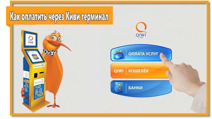 Найти QIWI Терминал не составит труда, как и оплатить с его помощью услугу или счет.