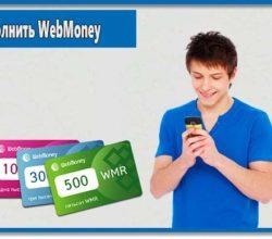 Пополнение WebMoney можно произвести несколькими способами, в том числе и без комиссии. Какой вариант лучше решать только вам.