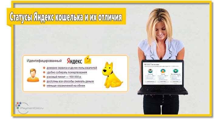 В системе «Яндекс.Деньги» действует несколько статусов. Каждый статус предусматривает индивидуальные особенности.