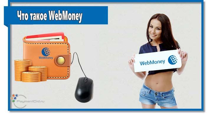Если Вы все еще не знаете, что такое WebMoney и чем может быть полезна эта система, то данная статья обязательна к прочтению.